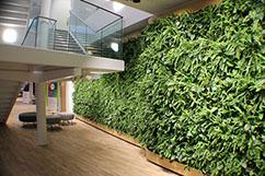 Gef sserie living wall - Wandgarten innen ...